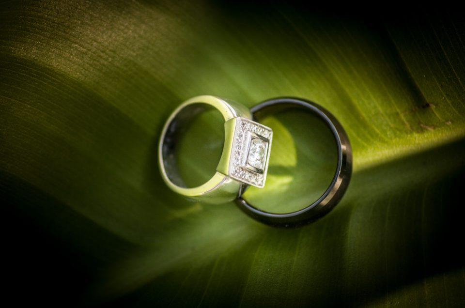 Garden Route Wedding Photographer